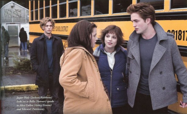 large-scanned-images-from-twilight-illustrated-companion-twilight-series-2608532-1600-982